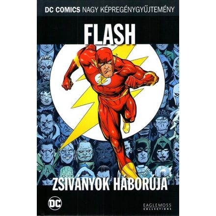 Flash - Zsiványok háborúja
